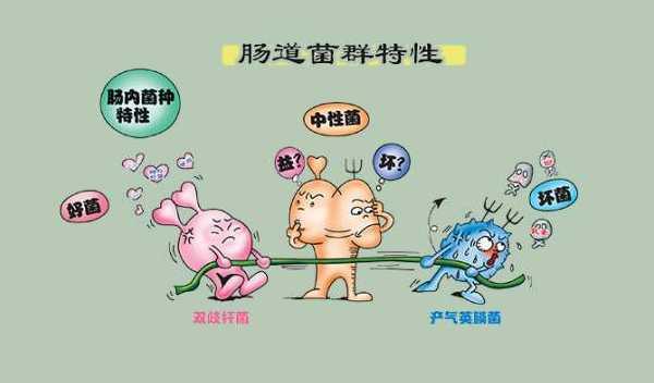 卫之幽益生菌粉合理防止腹泻,维护胃肠道健康!