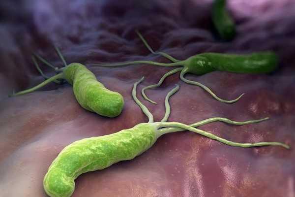 养之初:卫之幽益生菌粉,幽门螺旋杆菌健康品牌!