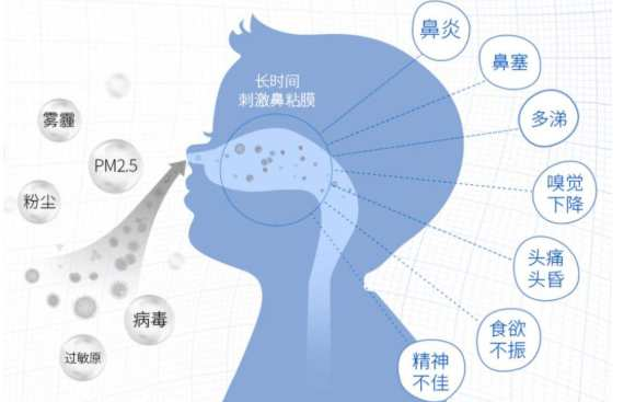 如何判断自己有鼻炎