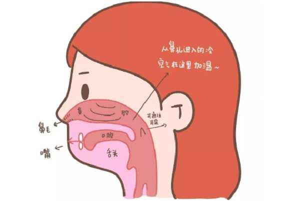 怎么判断是否鼻炎